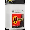 BANNER BIKE BULL B49-6 6V / 8Ah