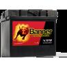 BANNER 53030 12V / 30Ah 300A P+